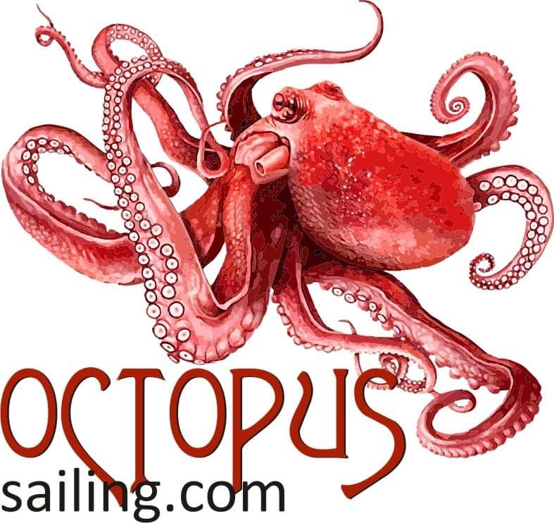 Octopus sailing